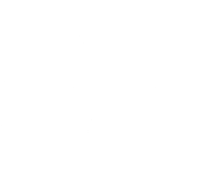 747 airplane silhouette